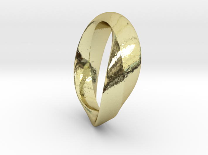 01-Mobius Ring No.13 3d printed