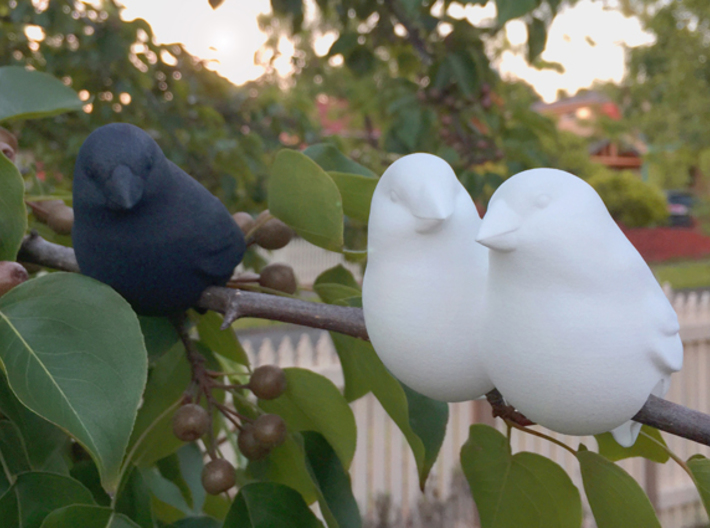 #BFF - Birdly feathered Friends 3d printed