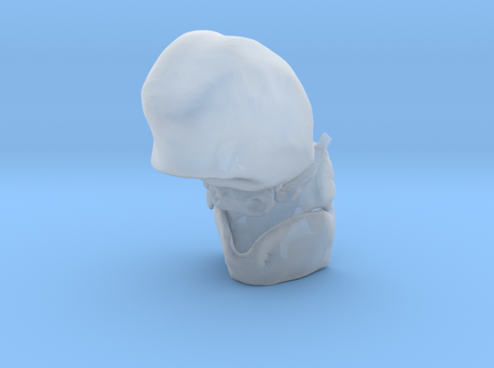 Subject 4c | Tongue + Thyroid + Hyoid + Epiglottis 3d printed