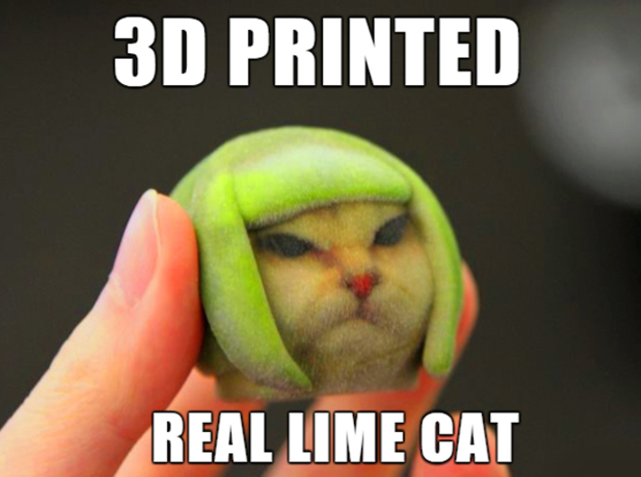 Lime Cat internet meme 3d printed cat meme