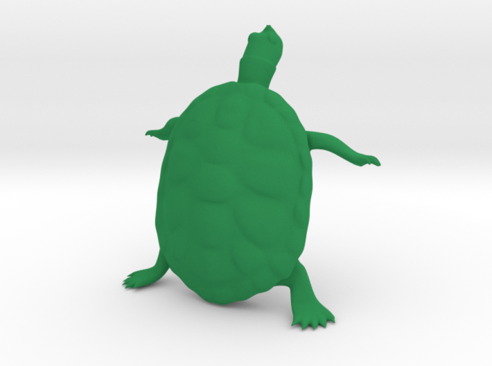 The Wondering Turtle 3d printed