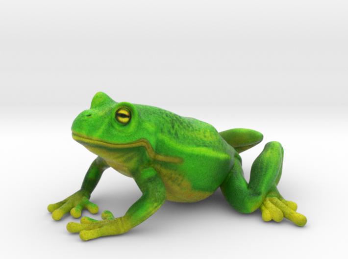 Smiling Frog 3d printed