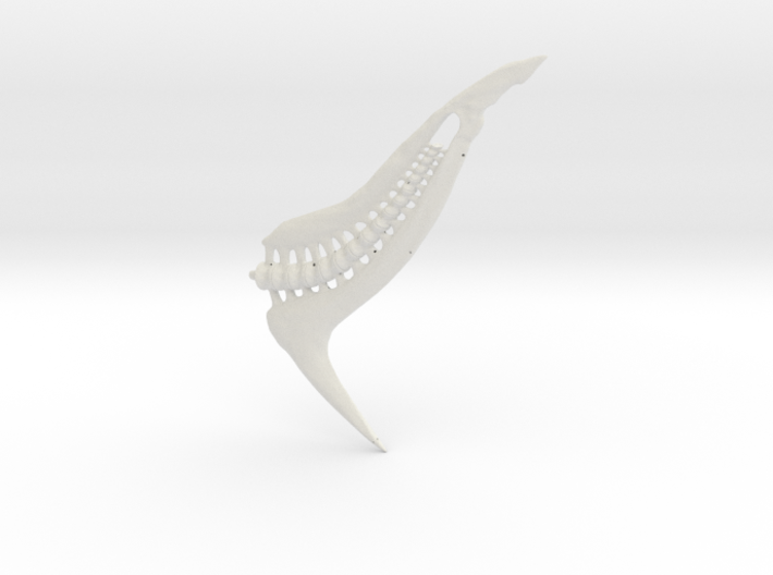 Tail May 30 Blend1 3d printed