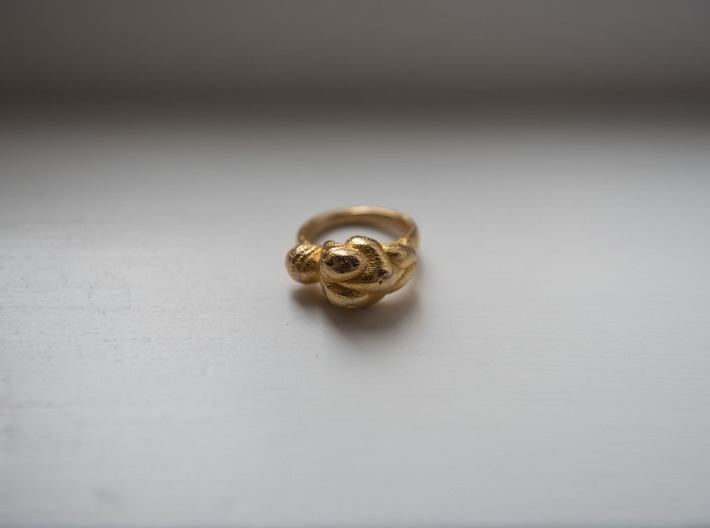 Venus Ring for Hezza - 15mm 3d printed