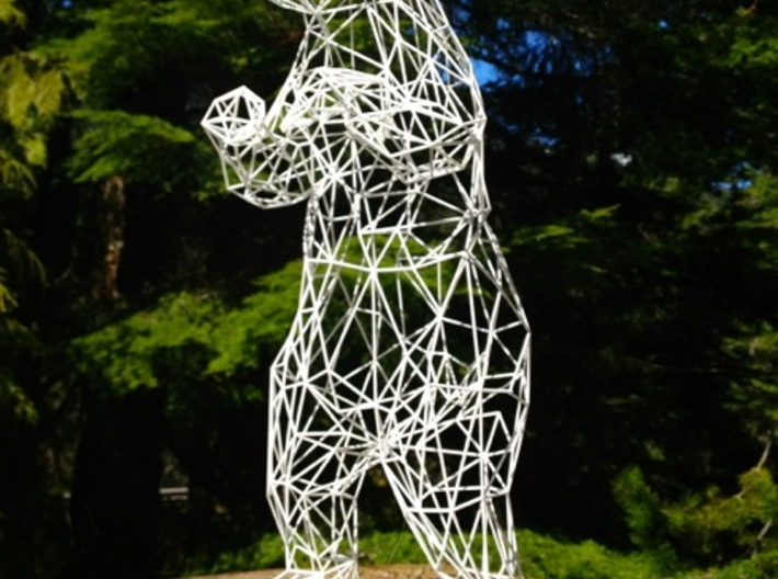 Young and Foolish Wireframe - 40cm 3d printed Young and Foolish