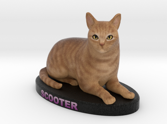 Customer Cat Figurine - Scooter 3d printed