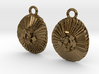 Coccolithus Coccolithophore Plankton Earrings  3d printed