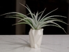 Ruba Rombic Vase for Air Plants 3d printed