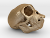 Spider Monkey Skull 50mm 3d printed