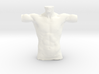 Man Body Part 004 scale in 4cm 3d printed