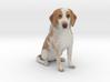 Custom Dog Figurine - Rocky 3d printed