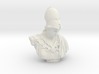 Bust of Athena of Velletri, goddess of technology 3d printed
