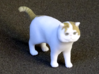 Standing Exotic Shorthair Cat 3d printed