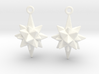 Moravian Star Earrings 3d printed