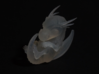 Tiny 'Crystalised' Baby Dragon 3d printed