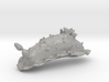Dorisoni the Nudibranch 3d printed