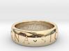 Size 6 Sir Francis Drake, Sic Parvis Magna Ring 3d printed