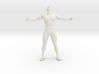 2016003-Strong man scale 1/10 3d printed