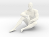 2016021-Strong man scale 1/10 3d printed