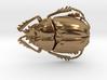 Scarab Beetle 3d printed