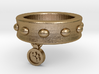 Dog Collar Ring 3d printed