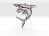 Helicoprion Pendant 3d printed