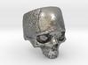 LabSkull 3d printed