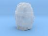 Graduate Boulder Faceplate (Titans Return) 3d printed