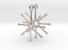 Asterionella Diatom Earrings - Science Jewelry 3d printed