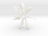 Model Organism Ornament Set 3d printed