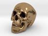 Human Skull - medium 3d printed