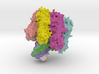 Staphylococcus aureus alpha-hemolysin 3d printed