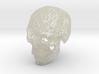 Crania Revolutis (small) 3d printed