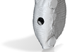 Dimetrodon1:15 body 3d printed