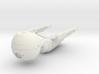 CS 22 Medical Ship 3d printed