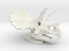 Triceratops Skull 3d printed