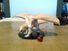 White Dragon Updated 3d printed