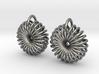 Torus Earrings 3d printed