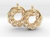 Torus Flower Earrings 3d printed