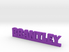 BRANTLEY Lucky 3d printed