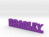 BRADLEY Lucky 3d printed