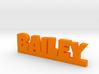 BAILEY Lucky 3d printed