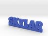 SKYLAR Lucky 3d printed