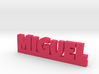 MIGUEL Lucky 3d printed
