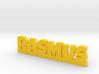 RASMUS Lucky 3d printed