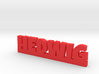 HEDWIG Lucky 3d printed