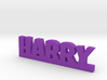 HARRY Lucky 3d printed