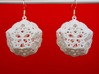 Butterfly Dodecahedron Earrings 3d printed