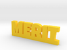 MERIT Lucky 3d printed