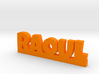 RAOUL Lucky 3d printed